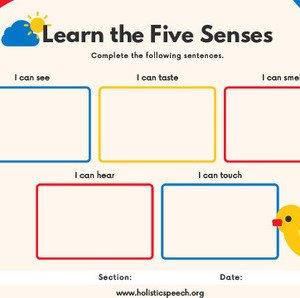 Our Senses Graphic Organizer